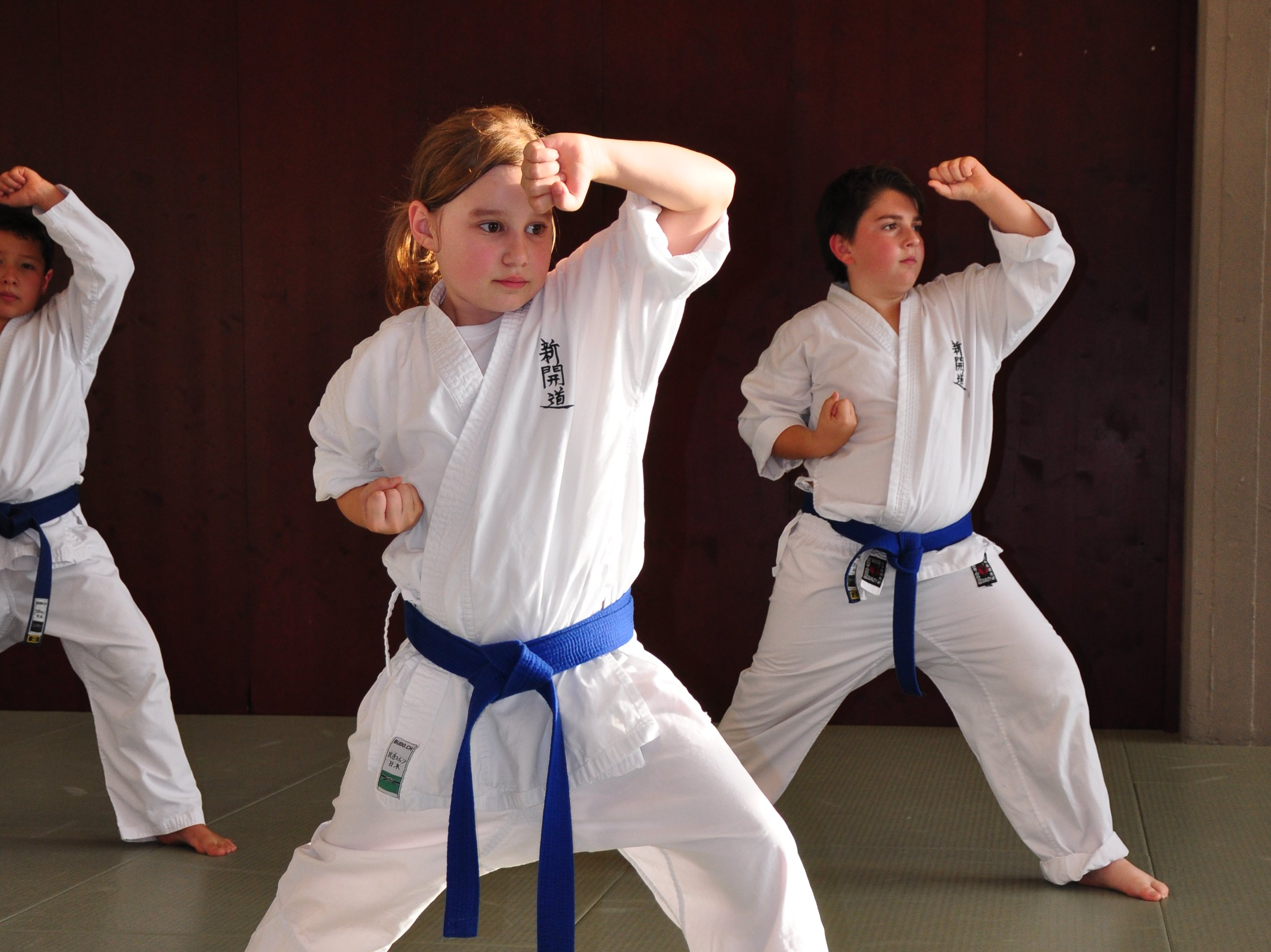 Karate Kinder Zürich